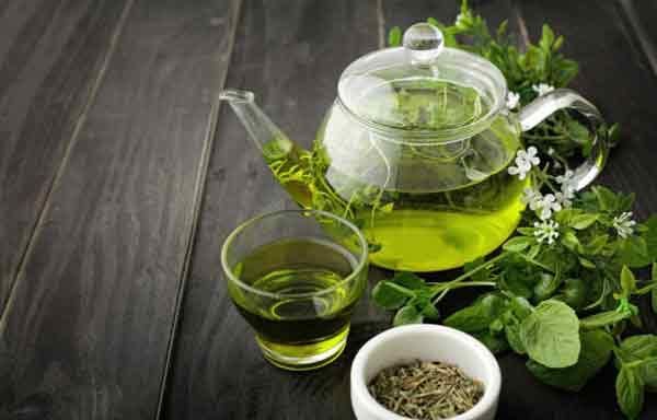 Foto de O ingrediente do chá verde pode melhorar o comprometimento da memória, a resistência à insulina no cérebro e a obesidade