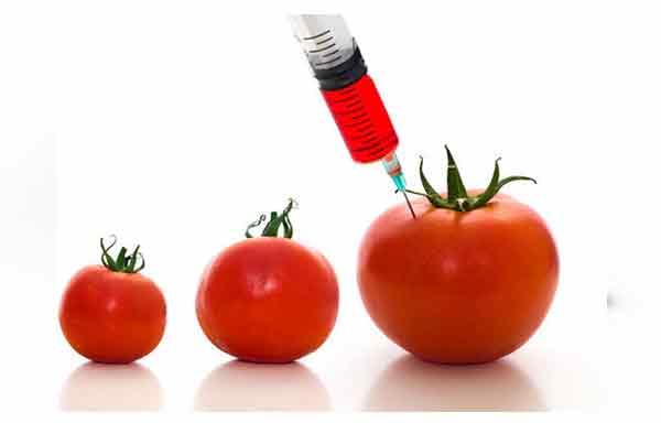 Photo of Consumidores veem rótulos de alimentos 'orgânicos' e 'não-GM' como sinônimos