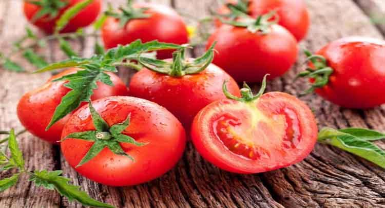 Photo of 7 Melhores Substitutos De Tomate