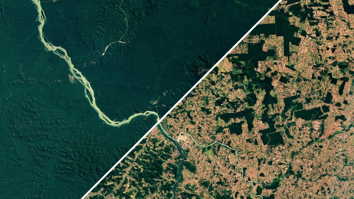 Photo of O desmatamento da Amazônia brasileira acelera sob Jair Bolsonaro – Quartz