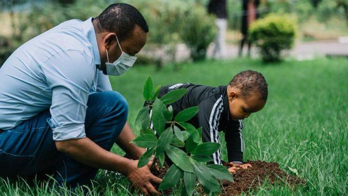 Foto de Etiópia plantará 5 bilhões de árvores em 2020 para combater as mudanças climáticas – Quartz Africa