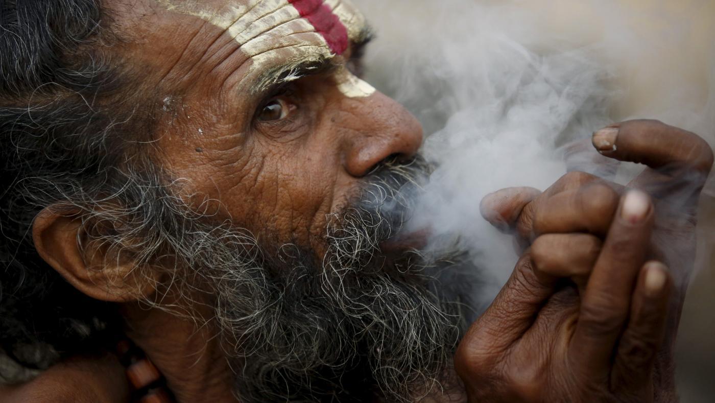 Foto de Qual é o status da produção de cannabis na Índia? – quartzo