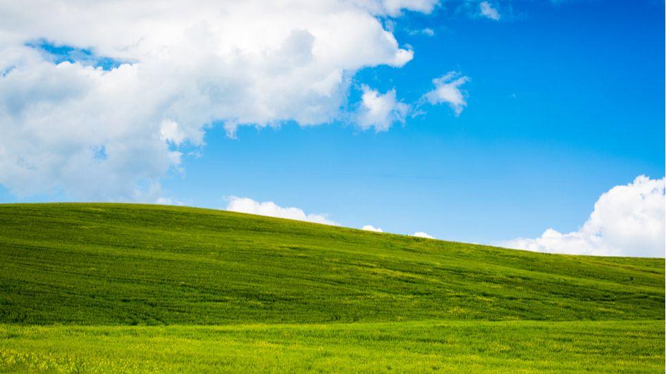Foto de Se você pode acreditar, milhões de pessoas ainda usam o Windows XP