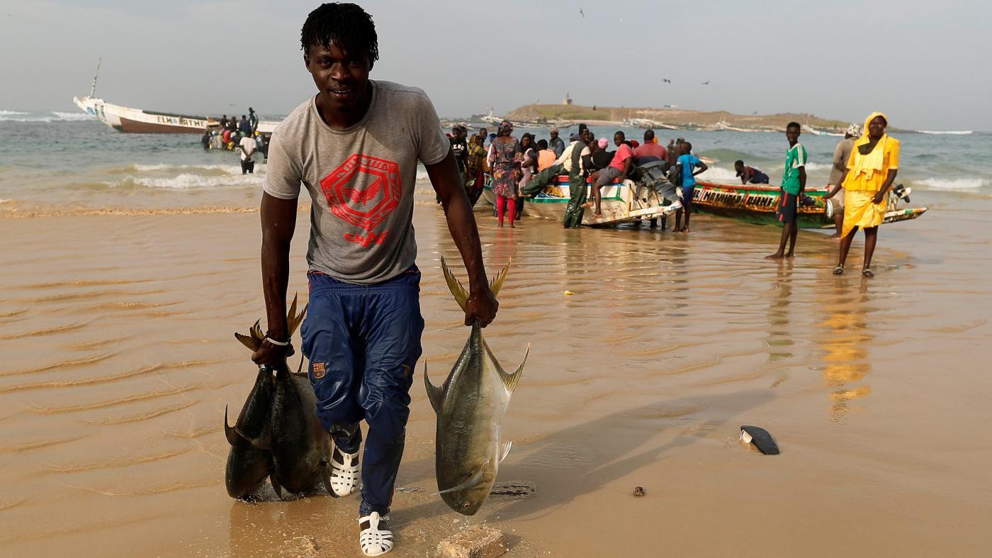 Foto de Senegal aprova embarcações chinesas com histórico de pesca ilegal, Greenpeace – Quartz Africa