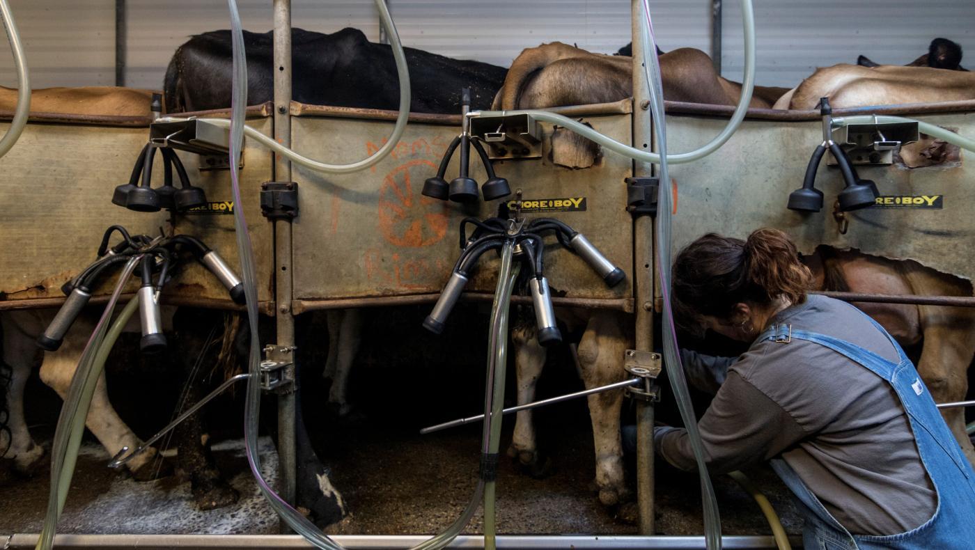 Foto de Os trabalhadores rurais não recebem horas extras devido a leis racistas – Quartzo