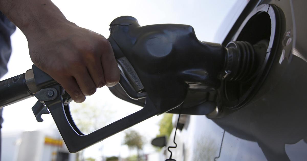 Foto de Estocando gasolina, lucros de Coupang, baleias afetuosas